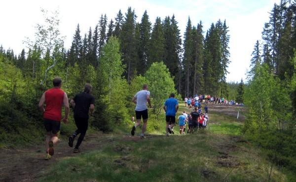 Birkebeinerløpet2013-pulje2-5