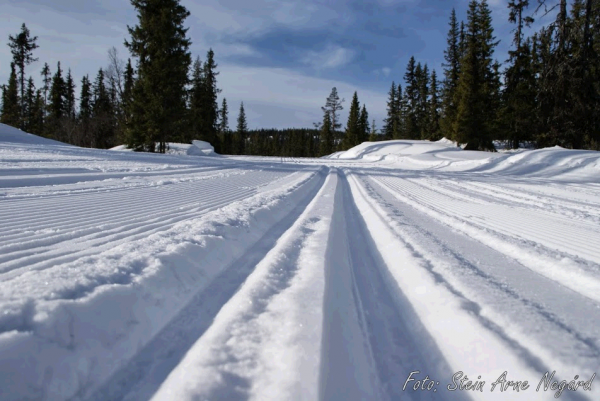 skispor kvarstad